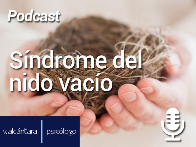 Síndrome del nido vacío